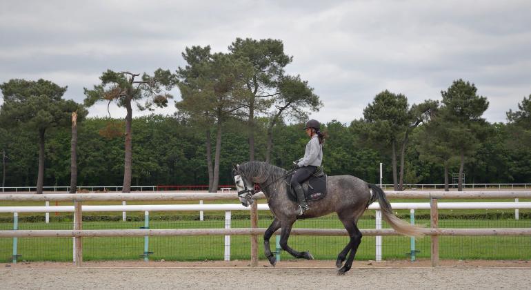 caballos puydufou2