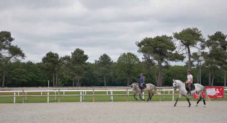 caballos puydufou4